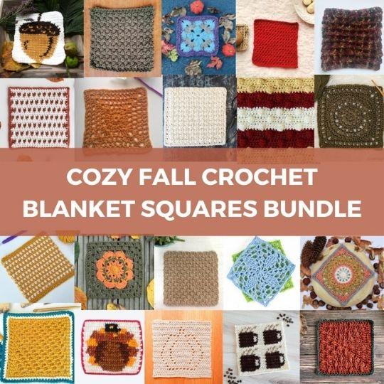 Cozy Fall Crochet Blanket Squares Bundle